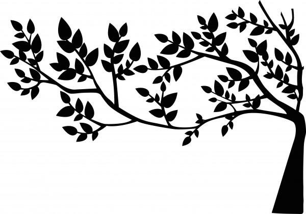 Samolepka na zeď - Listnatý strom 100x70cm